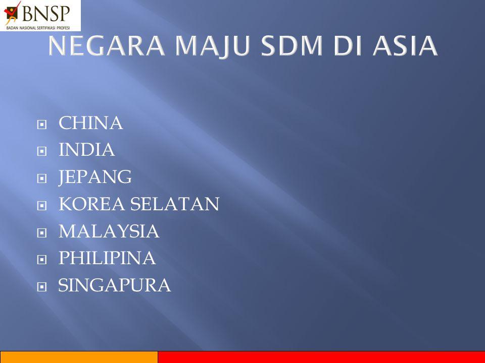 NEGARA MAJU SDM DI ASIA CHINA INDIA JEPANG KOREA SELATAN MALAYSIA