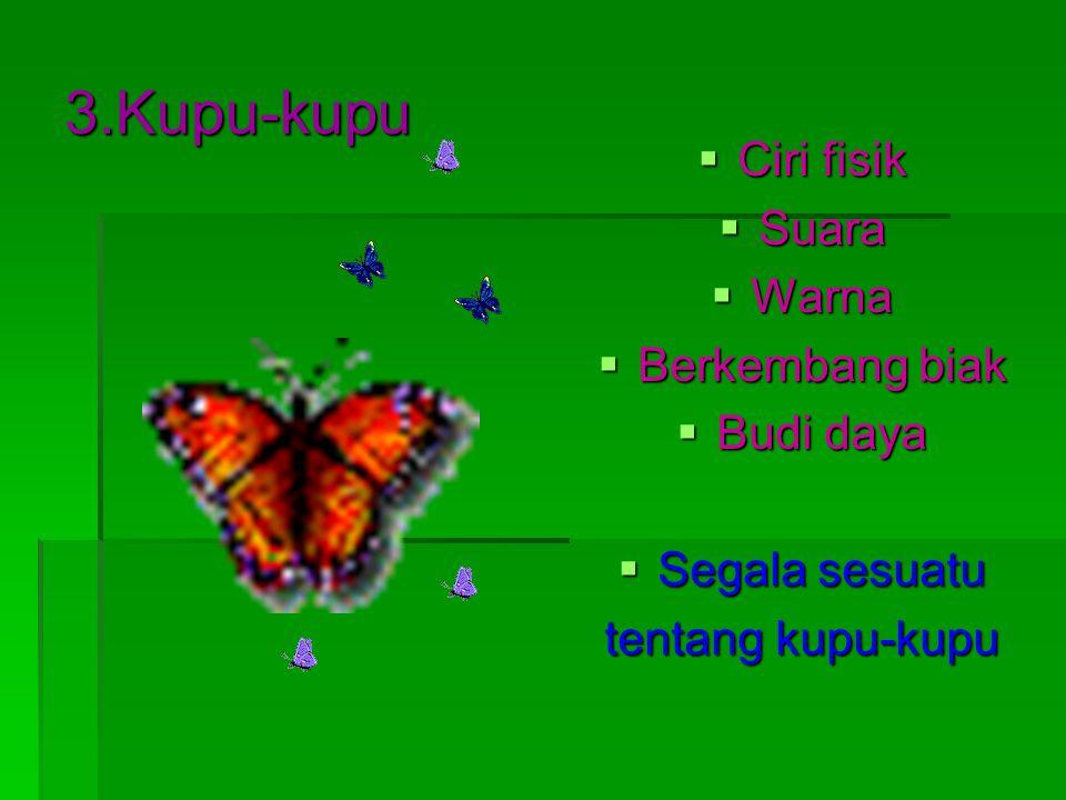 3.Kupu-kupu Ciri fisik Suara Warna Berkembang biak Budi daya