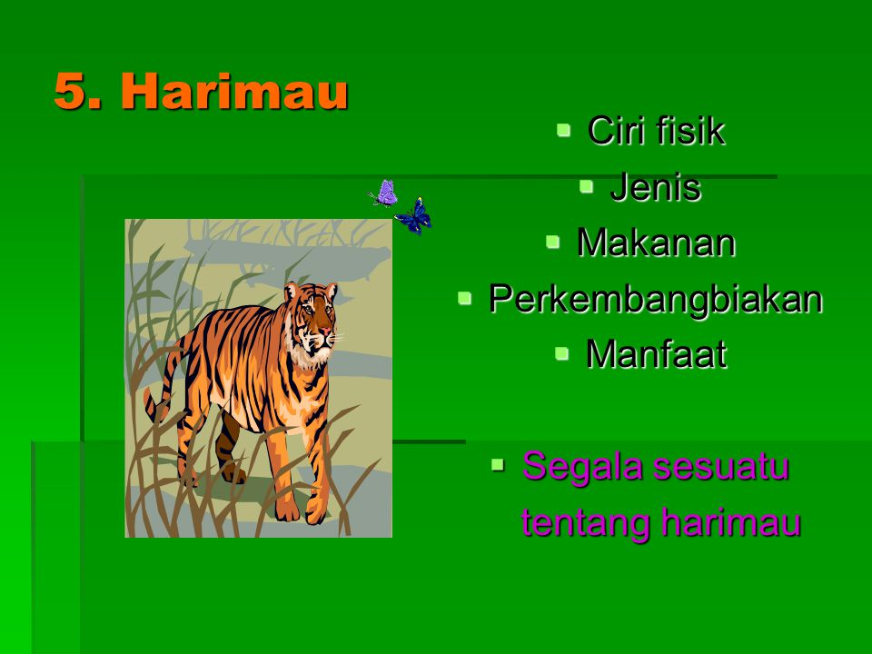 5. Harimau Ciri fisik Jenis Makanan Perkembangbiakan Manfaat