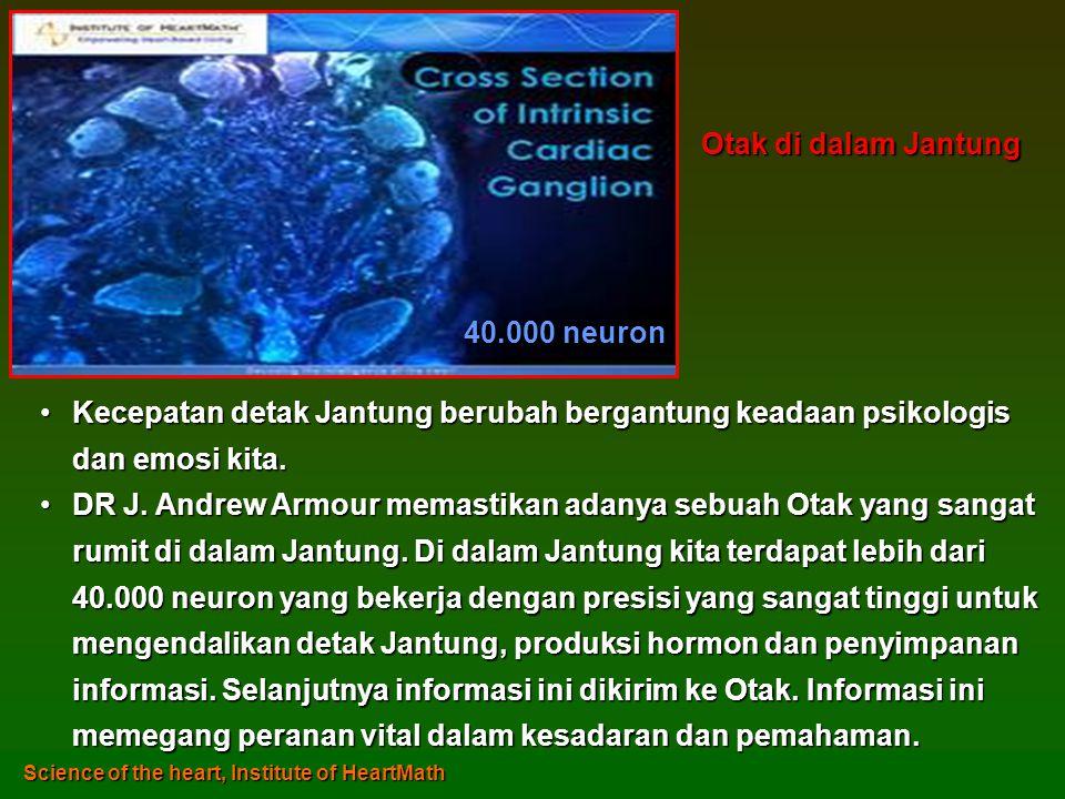 Otak di dalam Jantung 40.000 neuron