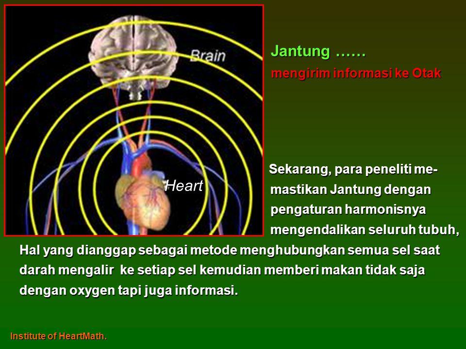 Jantung …… Heart mengirim informasi ke Otak