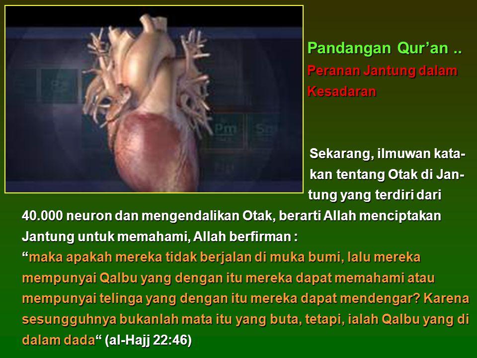 Pandangan Qur'an .. Peranan Jantung dalam Kesadaran