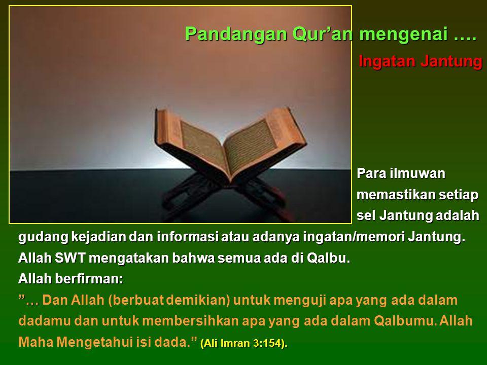 Pandangan Qur'an mengenai ….