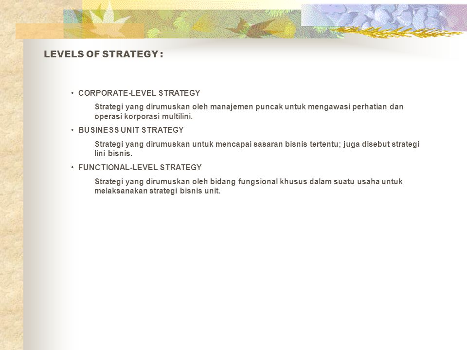 LEVELS OF STRATEGY : CORPORATE-LEVEL STRATEGY