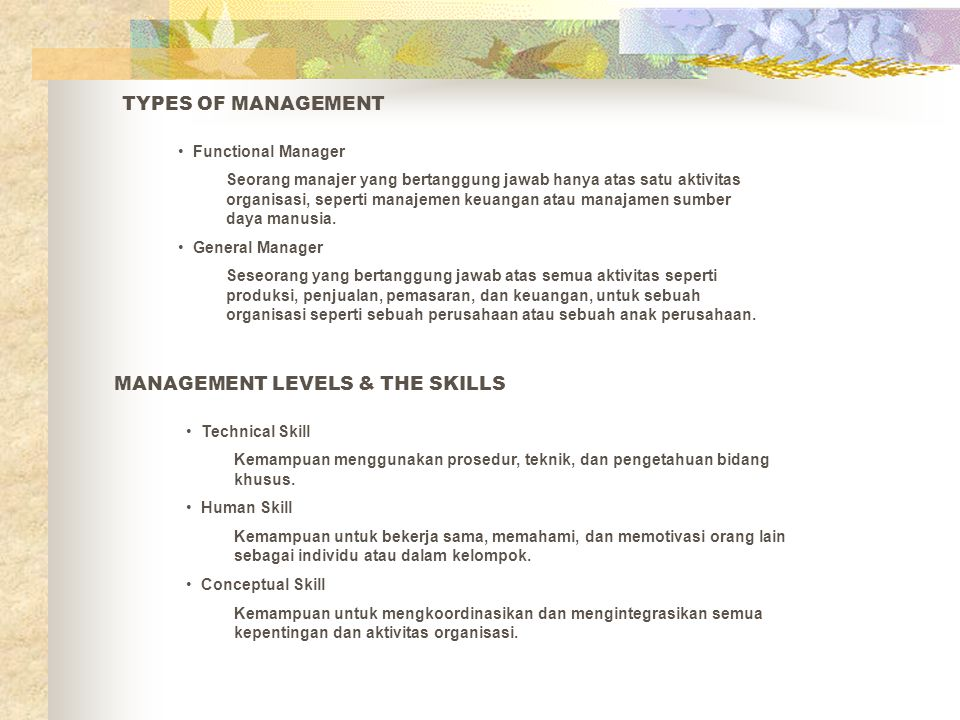 MANAGEMENT LEVELS & THE SKILLS