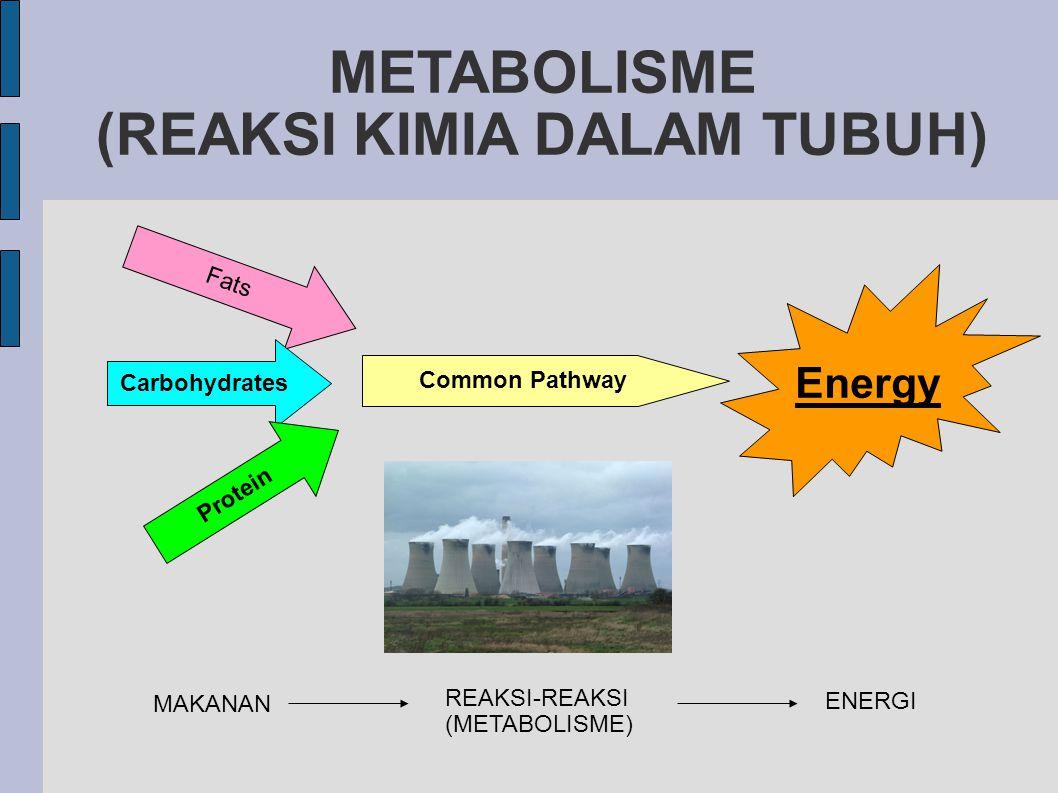 METABOLISME (REAKSI KIMIA DALAM TUBUH)