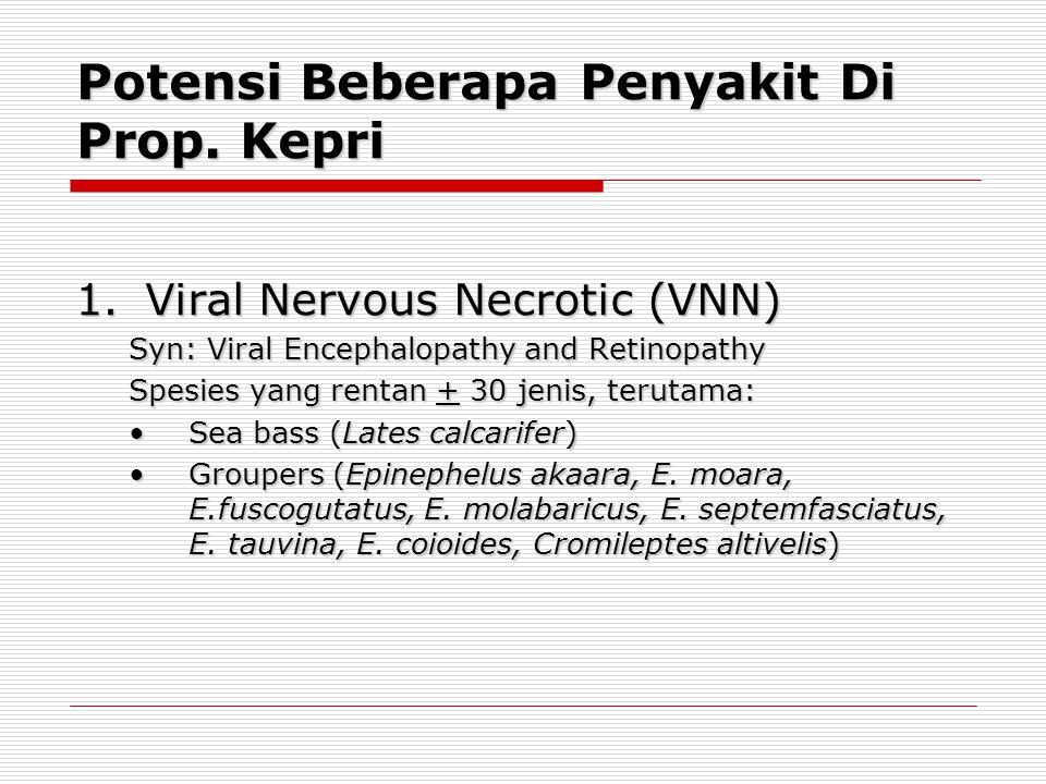 Potensi Beberapa Penyakit Di Prop. Kepri