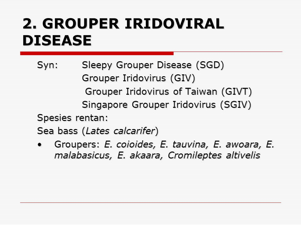 2. GROUPER IRIDOVIRAL DISEASE
