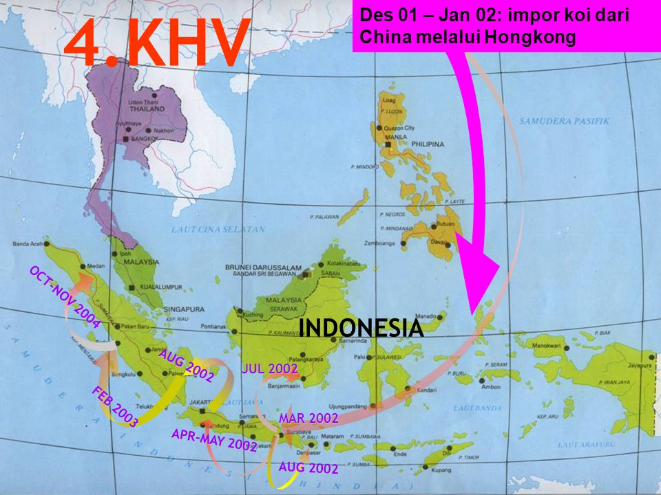 4.KHV INDONESIA Des 01 – Jan 02: impor koi dari China melalui Hongkong