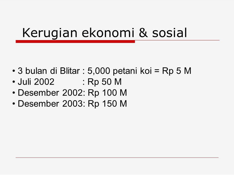 Kerugian ekonomi & sosial