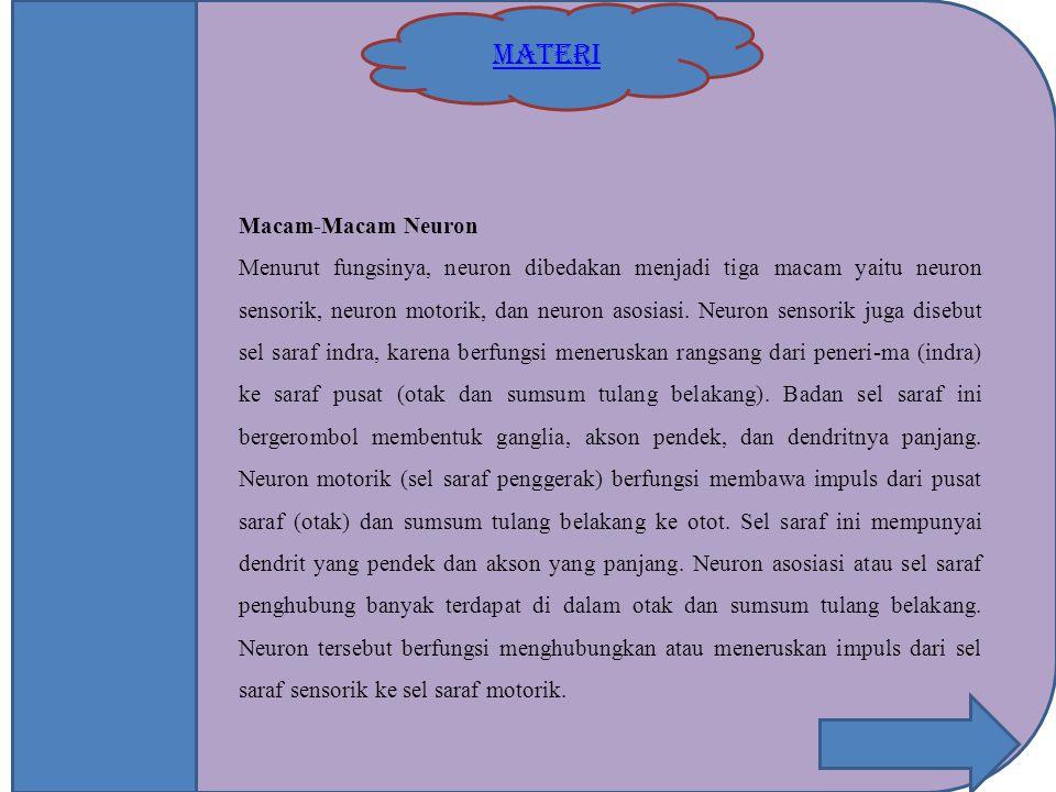 MATERI Macam-Macam Neuron