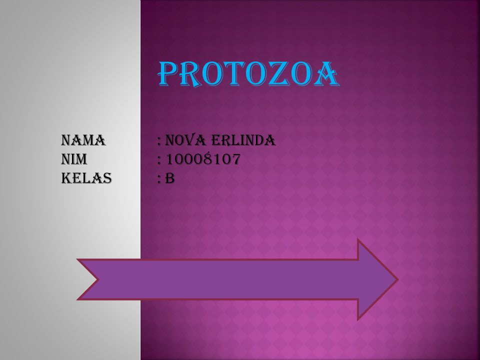 PROTOZOA Nama : Nova erlinda Nim : 10008107 Kelas : B