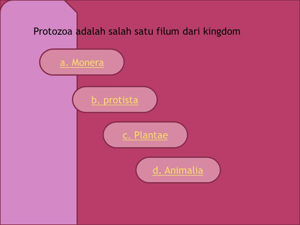 Protozoa adalah salah satu filum dari kingdom