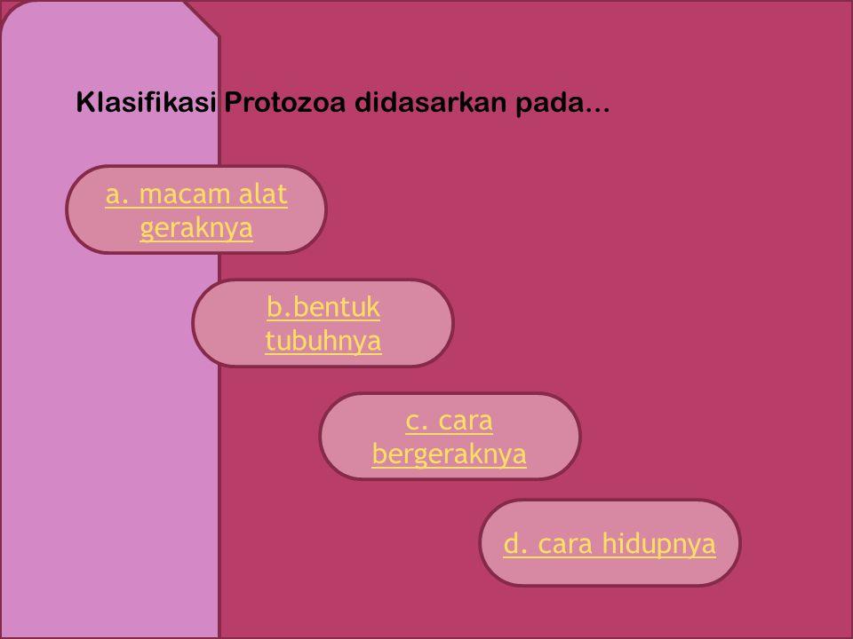 Klasifikasi Protozoa didasarkan pada...