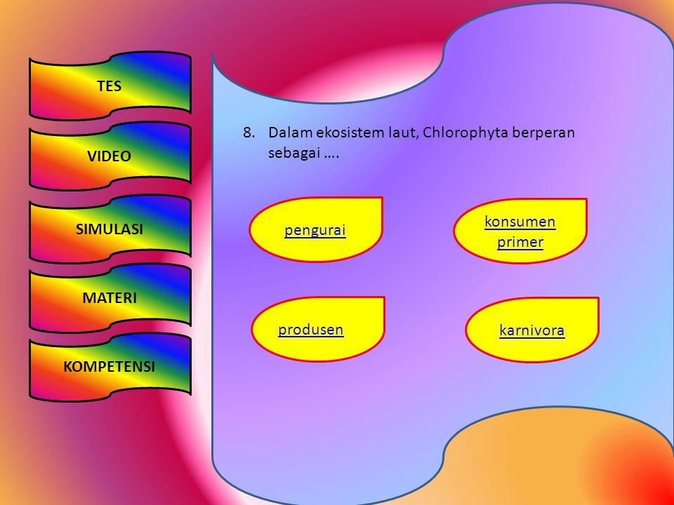 TES VIDEO. Dalam ekosistem laut, Chlorophyta berperan sebagai …. SIMULASI. pengurai. konsumen primer.