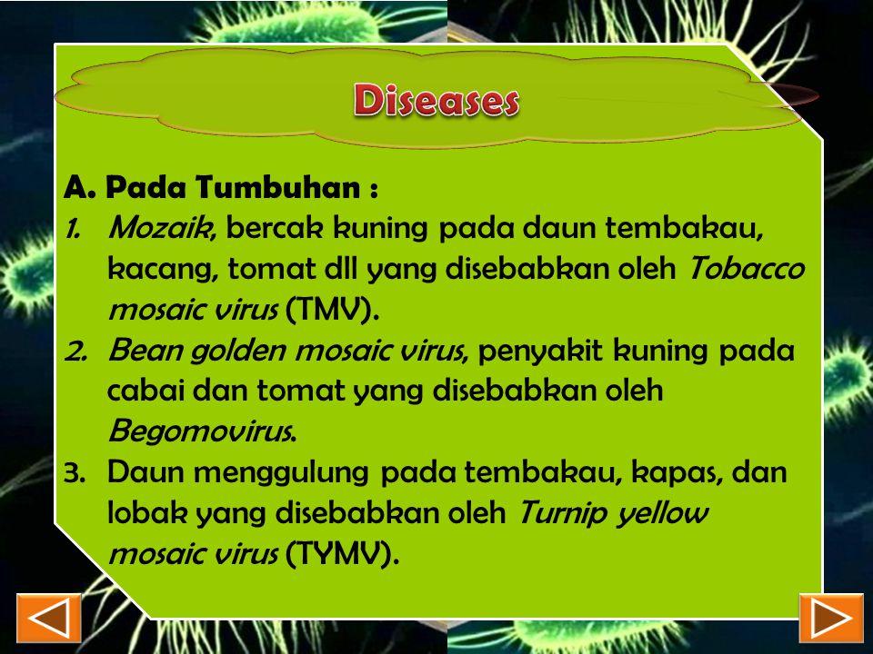 Diseases A. Pada Tumbuhan :