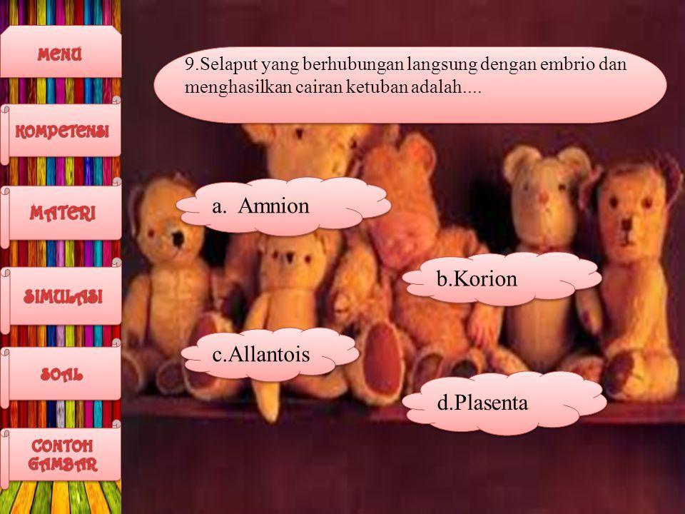 Amnion b.Korion c.Allantois d.Plasenta