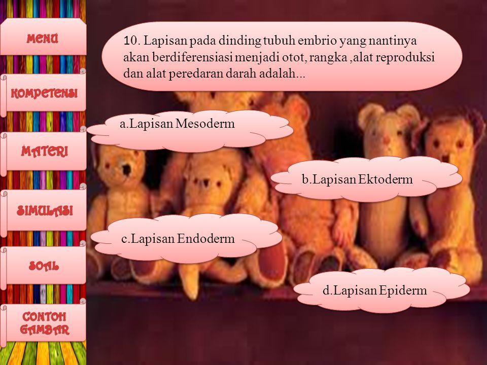 10. Lapisan pada dinding tubuh embrio yang nantinya akan berdiferensiasi menjadi otot, rangka ,alat reproduksi dan alat peredaran darah adalah...