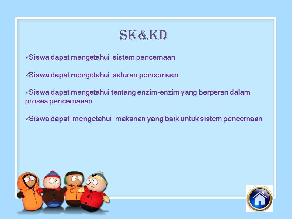 SK&KD Siswa dapat mengetahui sistem pencernaan