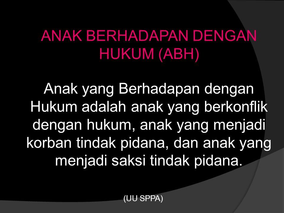 ANAK BERHADAPAN DENGAN HUKUM (ABH)