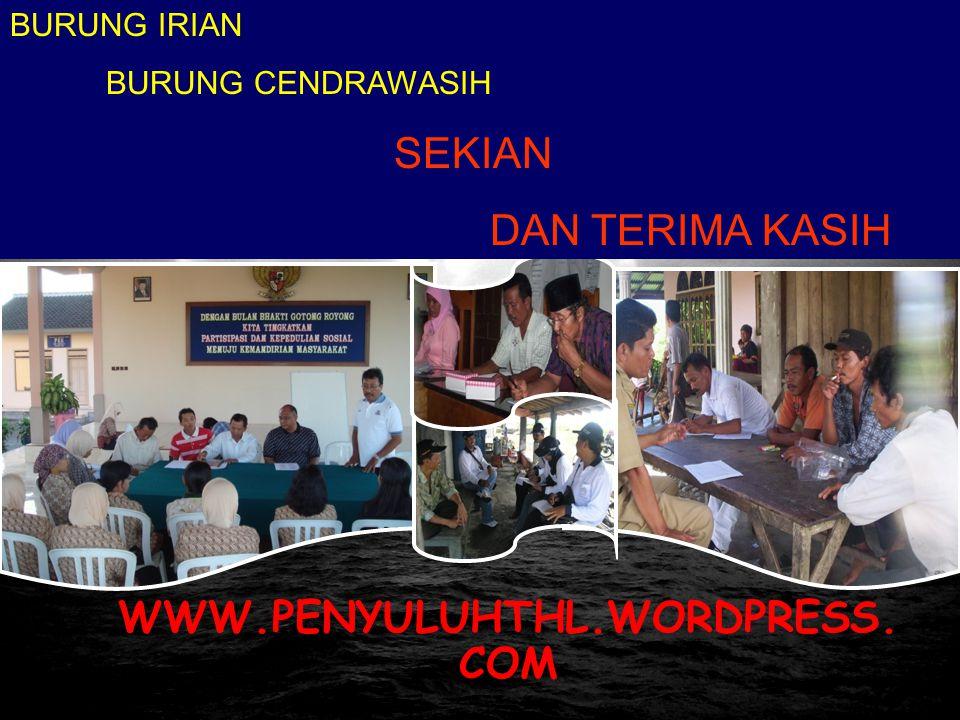 Pusat Pengembangan Penyuluhan BPSDM-KP