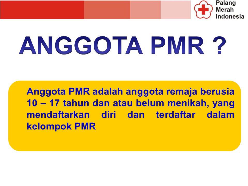 ANGGOTA PMR .