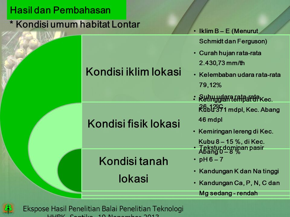 * Kondisi umum habitat Lontar