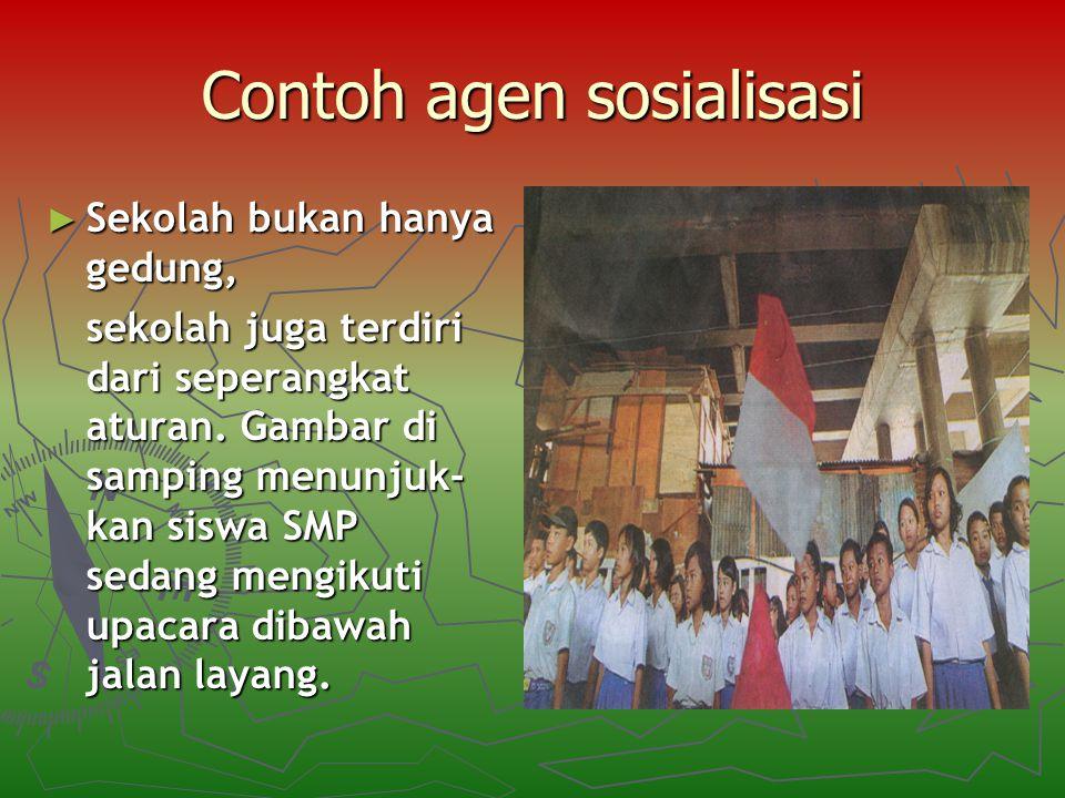 Contoh agen sosialisasi