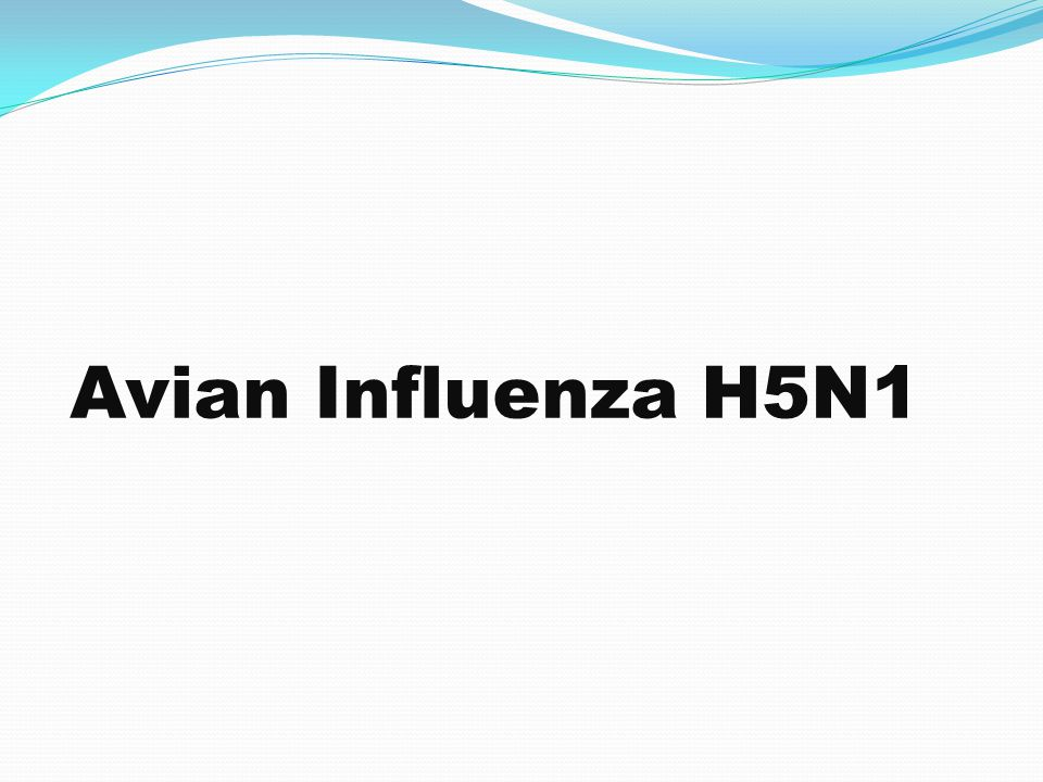 Avian Influenza H5N1