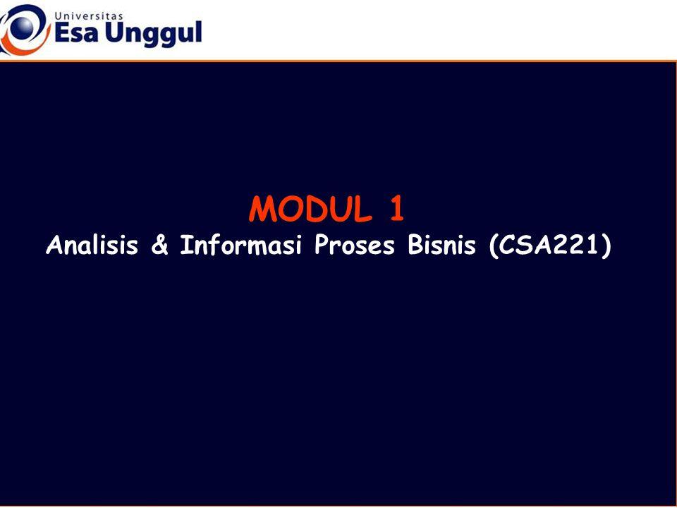 Analisis & Informasi Proses Bisnis (CSA221)