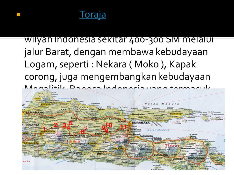 Suku Dayak, Toraja, Batak, Papua dsb. b