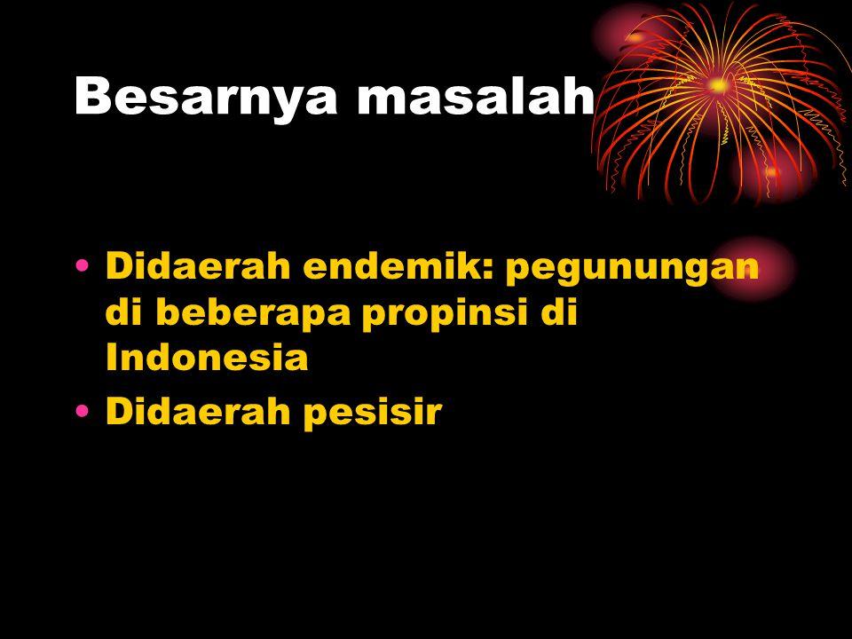 Besarnya masalah Didaerah endemik: pegunungan di beberapa propinsi di Indonesia Didaerah pesisir