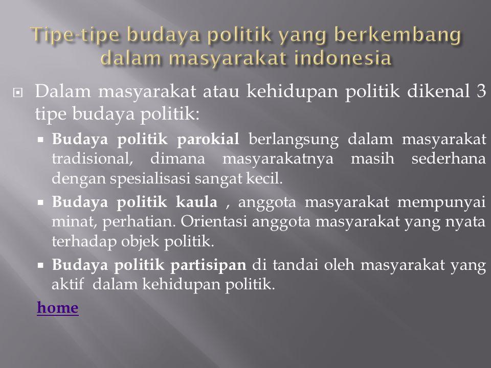 Tipe-tipe budaya politik yang berkembang dalam masyarakat indonesia