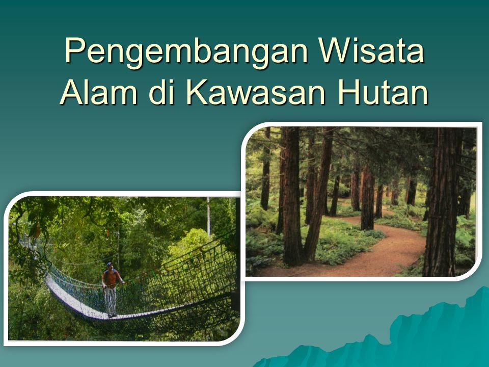 Pengembangan Wisata Alam di Kawasan Hutan