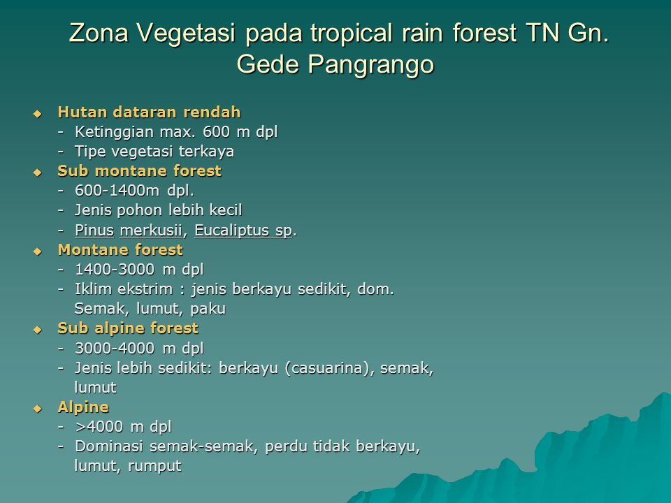 Zona Vegetasi pada tropical rain forest TN Gn. Gede Pangrango