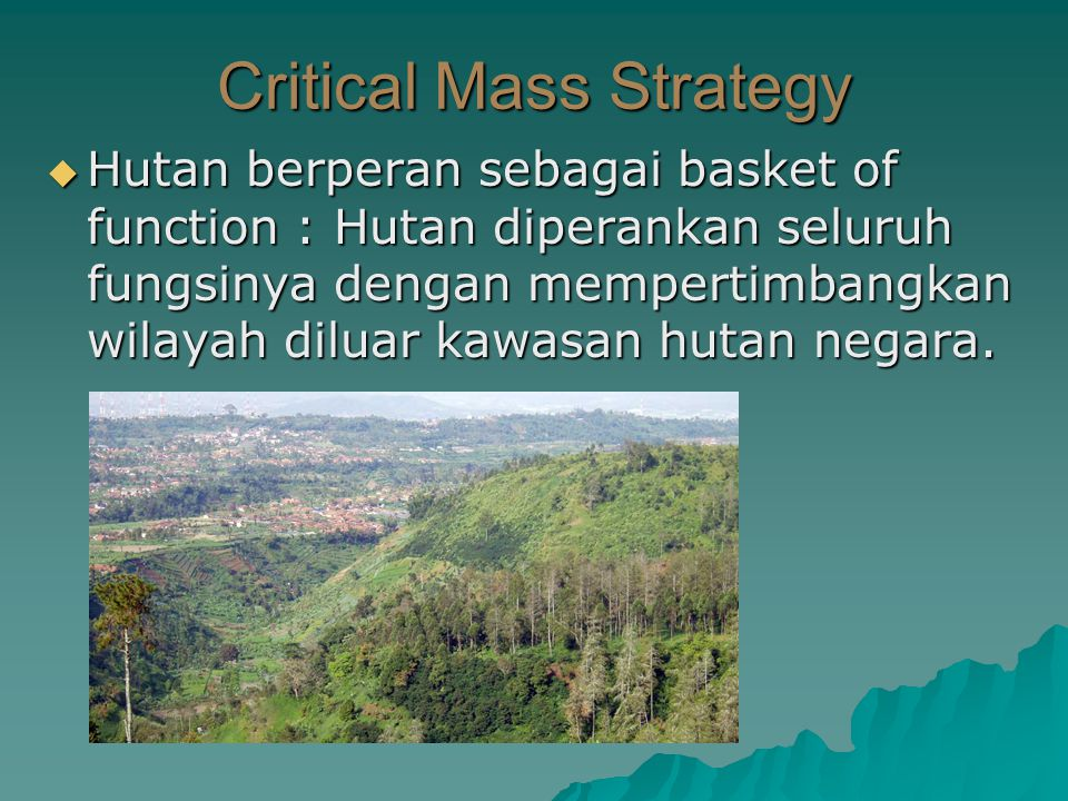 Critical Mass Strategy