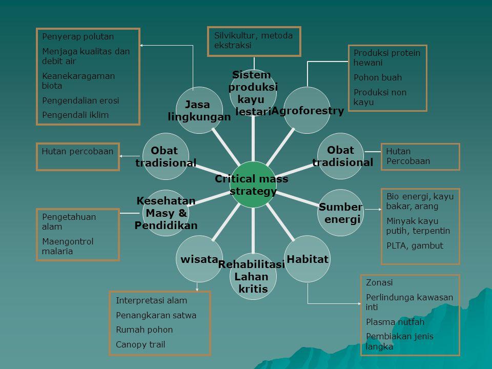 Penyerap polutan Menjaga kualitas dan debit air. Keanekaragaman biota. Pengendalian erosi. Pengendali iklim.