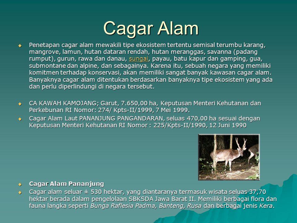 Cagar Alam