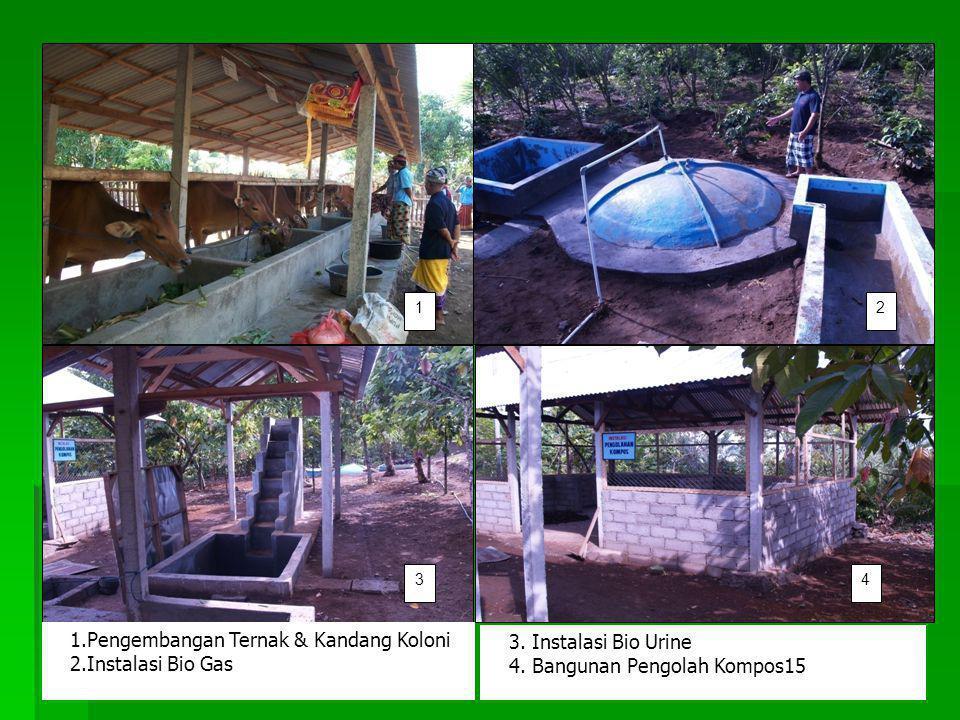 .Pengembangan Ternak & Kandang Koloni 2.Instalasi Bio Gas