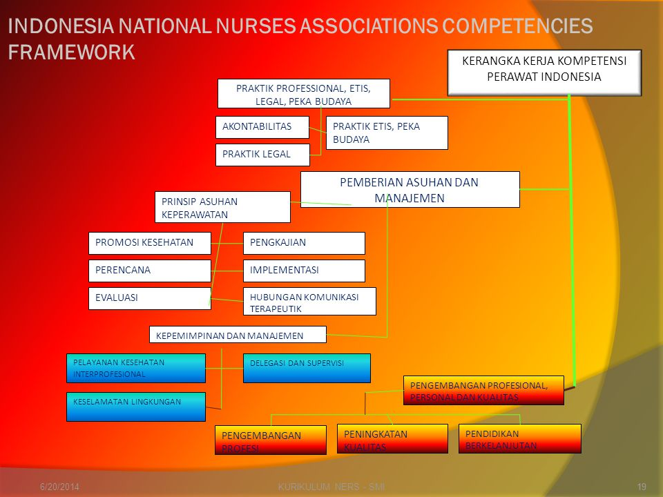INDONESIA NATIONAL NURSES ASSOCIATIONS COMPETENCIES FRAMEWORK