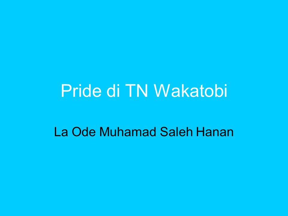La Ode Muhamad Saleh Hanan