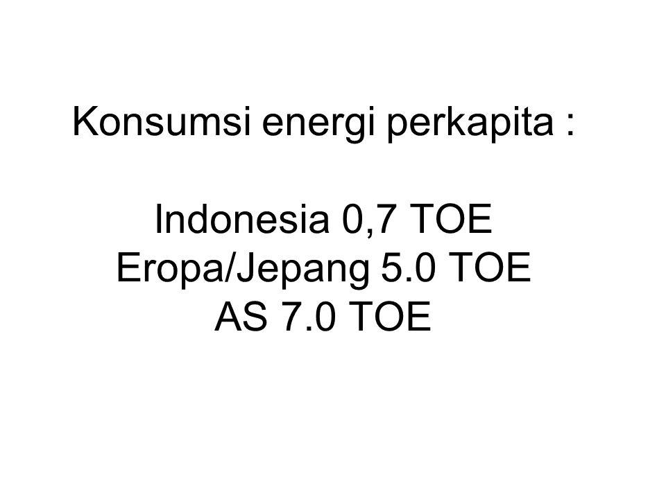 Konsumsi energi perkapita : Indonesia 0,7 TOE Eropa/Jepang 5