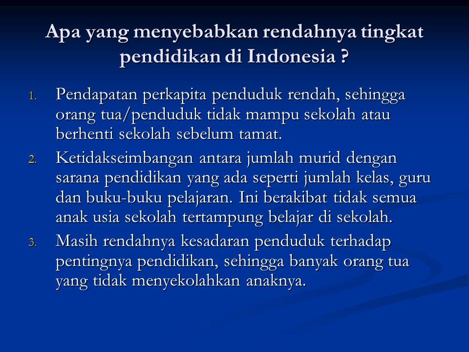 Apa yang menyebabkan rendahnya tingkat pendidikan di Indonesia