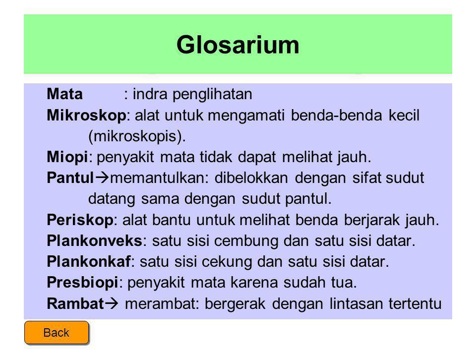 Glosarium Mata : indra penglihatan