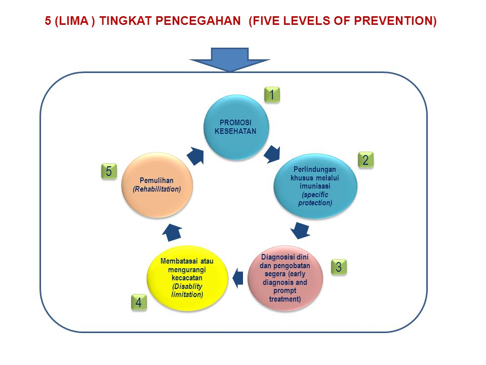 5 (LIMA ) TINGKAT PENCEGAHAN (FIVE LEVELS OF PREVENTION)