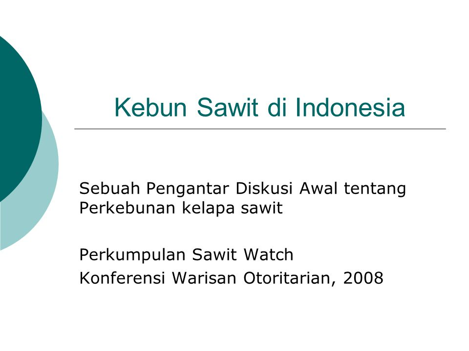 Kebun Sawit di Indonesia