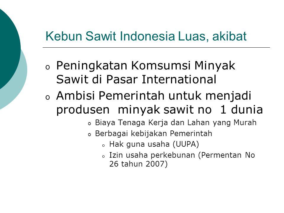 Kebun Sawit Indonesia Luas, akibat