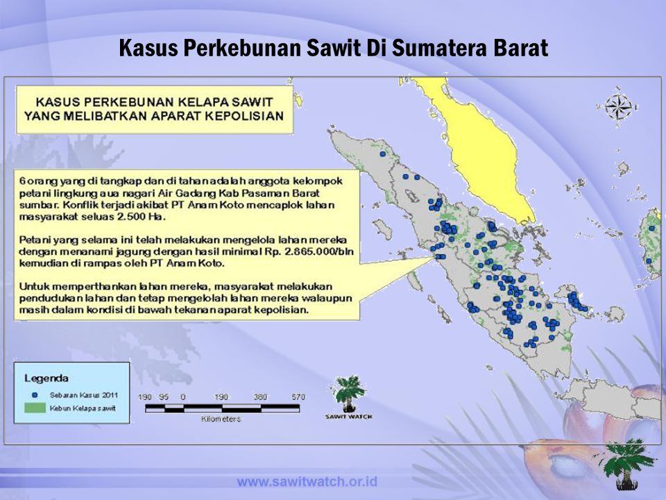 Kasus Perkebunan Sawit Di Sumatera Barat