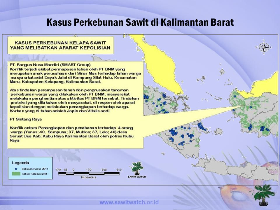 Kasus Perkebunan Sawit di Kalimantan Barat
