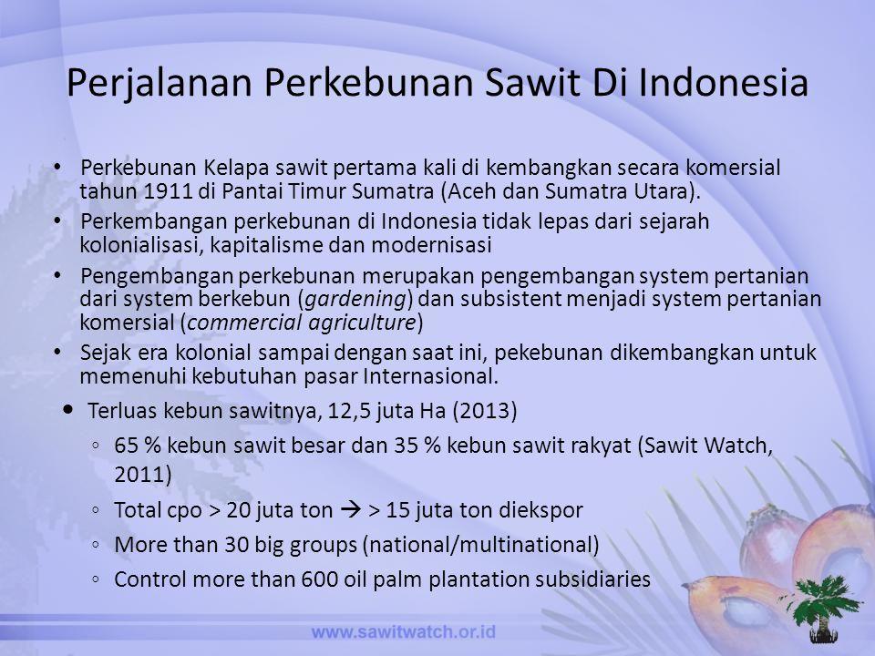 Perjalanan Perkebunan Sawit Di Indonesia